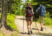 Los 7 mejores bastones de trekking