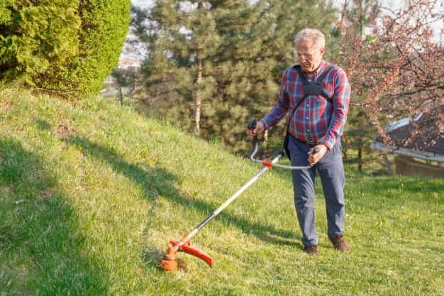 La cortadora de césped definitiva en 2021 - Oferta especial
