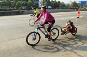 Los 7 mejores remolques de bicicleta para niños