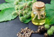 Los 7 mejores aceites de ricino para el cuidado del cuerpo