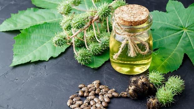 El mejor aceite de ricino corporal y para tratamientos capilares
